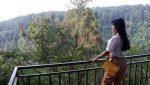 Kopi Daong Tempat Ngopi Cantik di Tengah Hutan Pinus Bogor